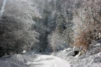 Route corse très enneigée...avis aux amateurs de rally sur neige