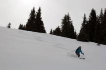 poudre poudre, gros skis presque indispensables