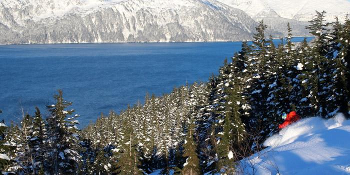 Alaska : La péninsule de Kenai