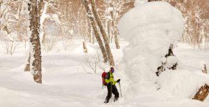 ski de rando au japon sur l'île d'Hokkaido