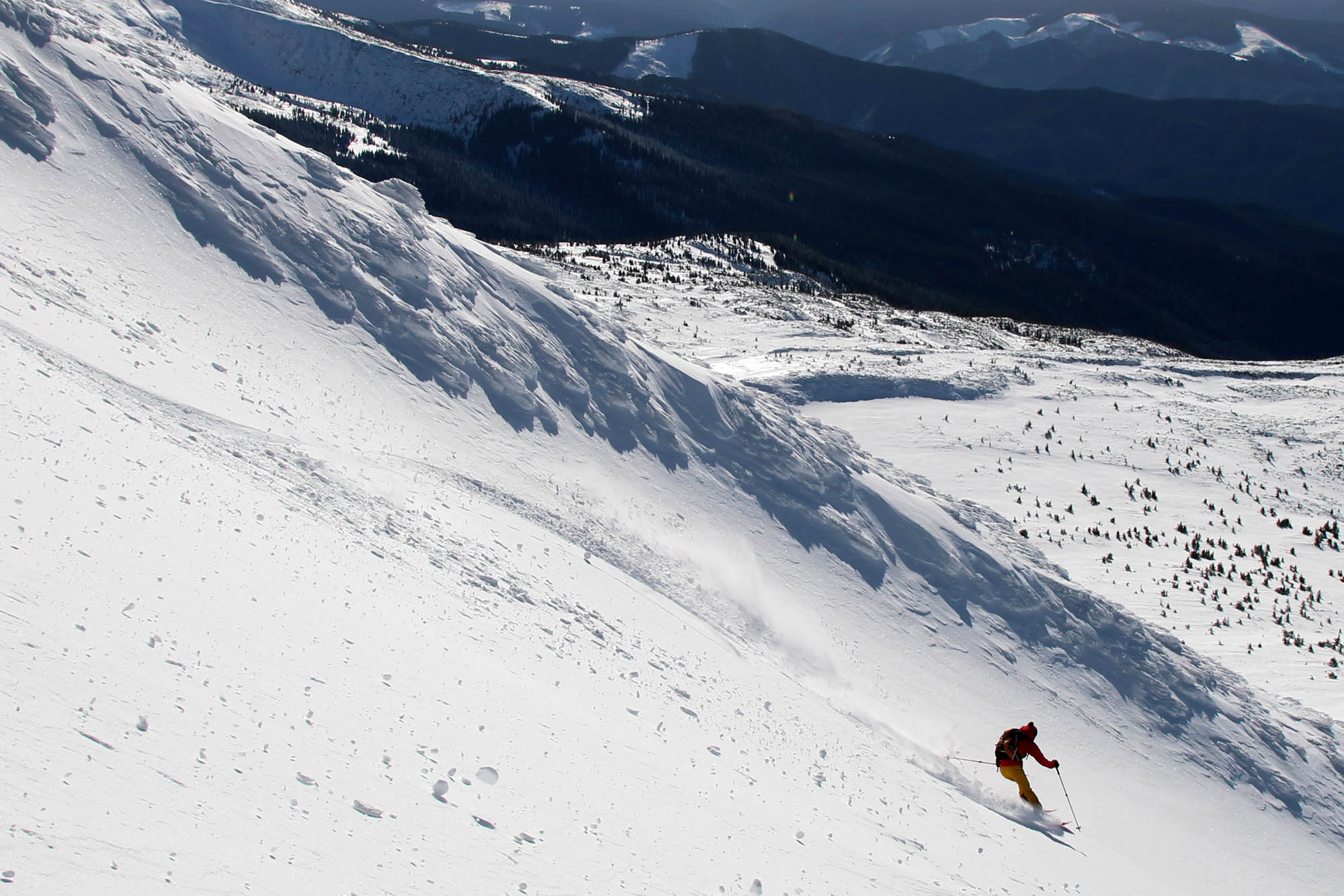 Test ski Movement Alp Tracks 95