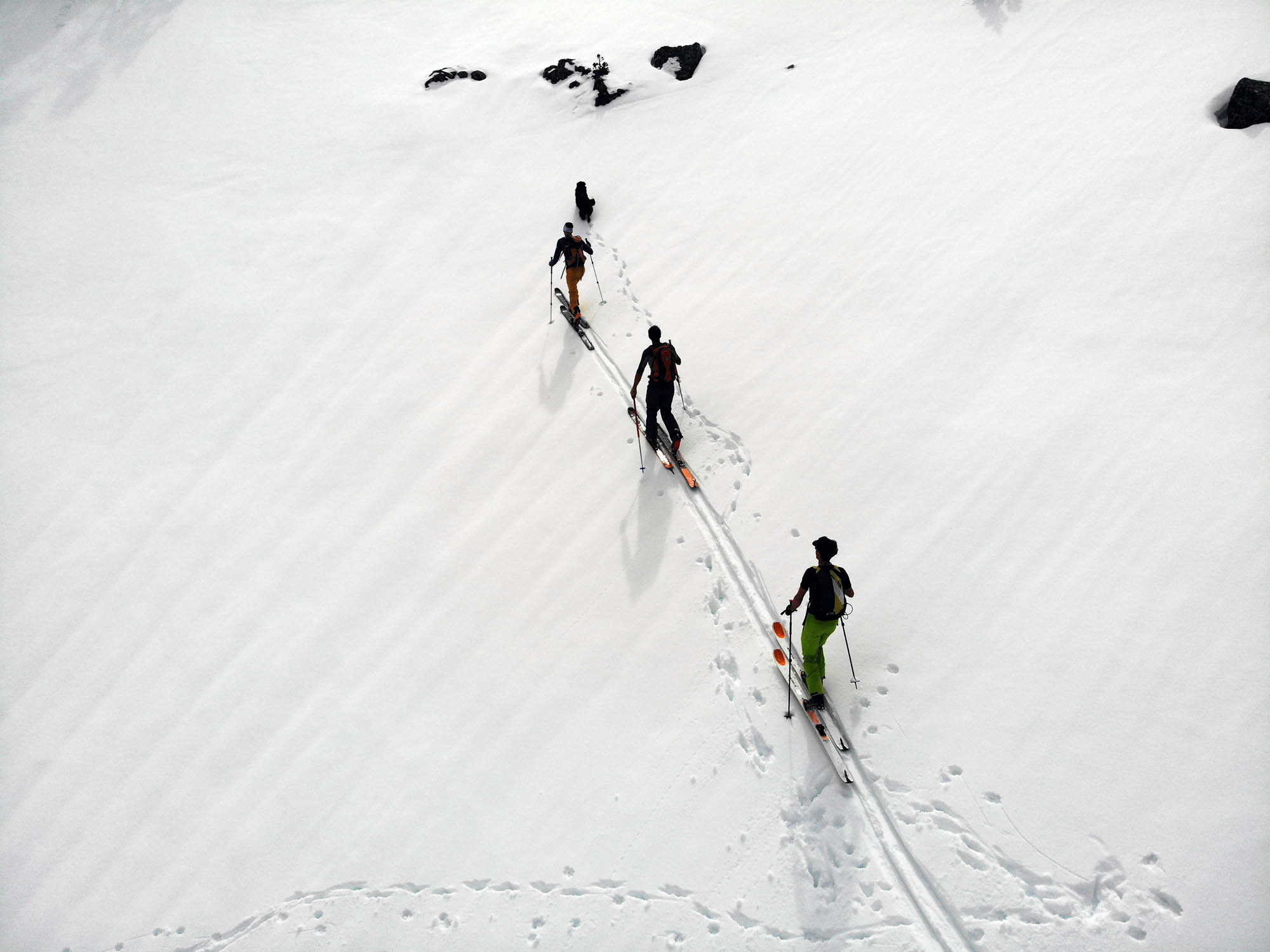 Test ski rando Movement Alp Tracks 95