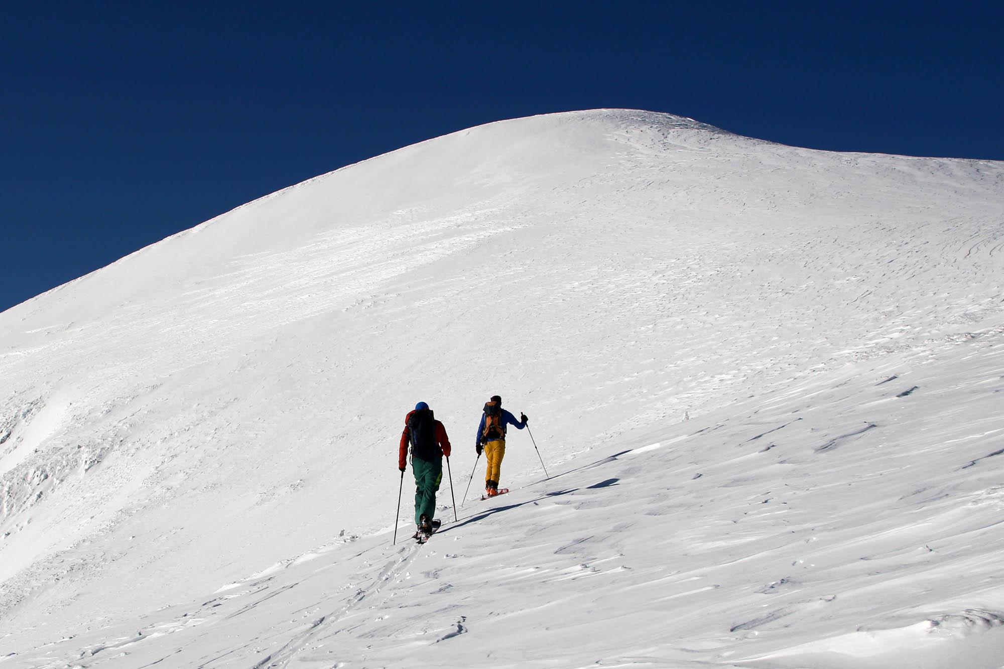 Test ski randonnée Majesty Superwolf